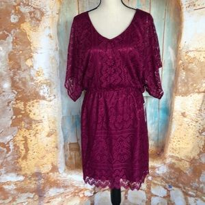 NWT Laundry by Shelli Segal Plum Lace Dress Sz 8
